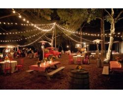 50 Foot Outdoor Globe String Lights